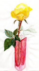 gloria-dei-rose