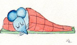 Bernhard im Schlafsack