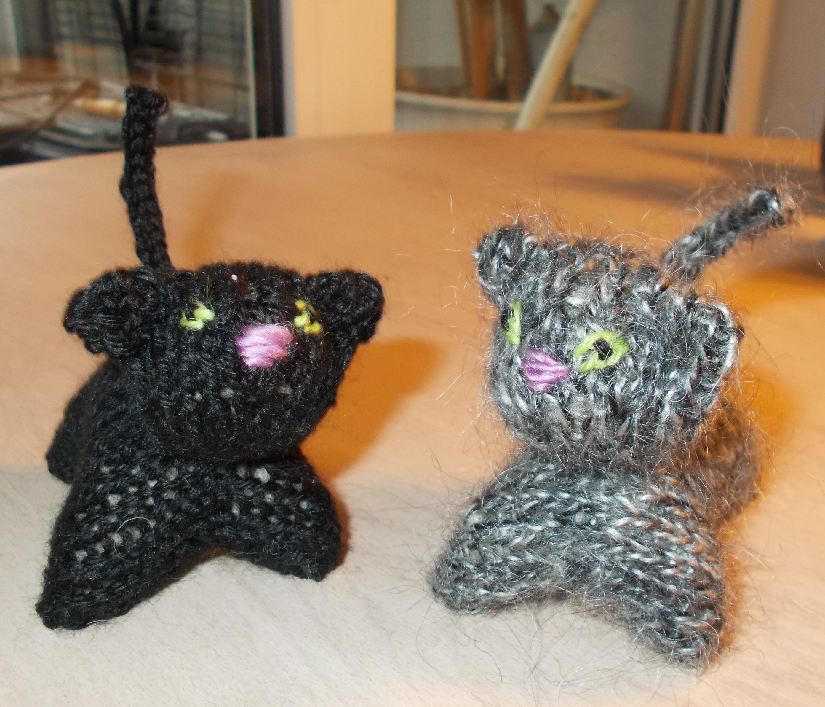 zwei miezekatzen
