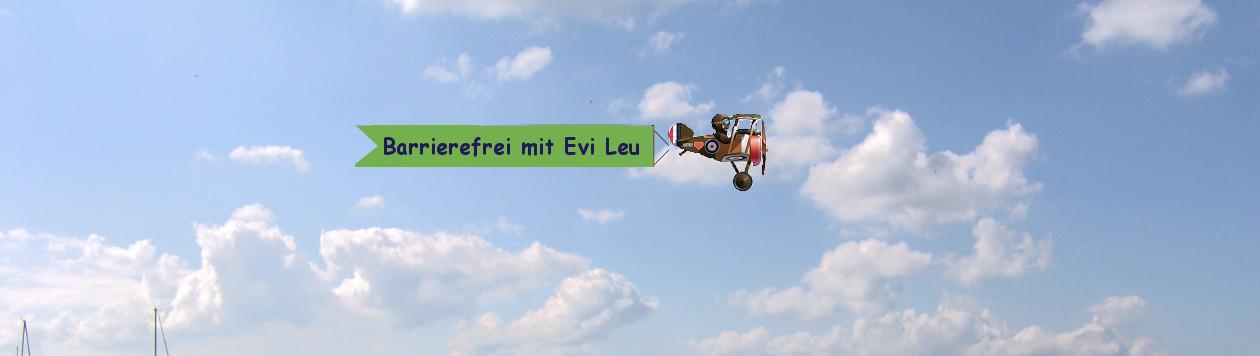 Systemberatung Evi Leu